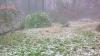 ಕೊಡಗು : ವಿವಿಧ ಪ್ರದೇಶದಲ್ಲಿ ತಂಪೆರೆದ ಆಲಿಕಲ್ಲು ಸಹಿತ ಮಳೆ