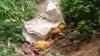 ಅರಕಲಗೂಡಿನ ಅಂಗನವಾಡಿ ಬಳಿ ವಾಮಾಚಾರ; ಮಕ್ಕಳನ್ನು ಕಳಿಸಲು ಹಿಂದೇಟು