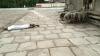 ಯಡಿಯೂರಪ್ಪ ಸಿಎಂ ಆಗಲು ಉರುಳು ಸೇವೆ ಸಲ್ಲಿಸಿದ ಕೊಪ್ಪದ ಯುವಕ