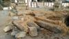 ನಿಧಿಗಾಗಿ ಆನೆಗುಂದಿಯಲ್ಲಿ ವ್ಯಾಸರಾಜರ ಬೃಂದಾವನ ಧ್ವಂಸಗೊಳಿಸಿದ ದುಷ್ಕರ್ಮಿಗಳು