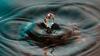 ಮುಂಬೈ: 73.18 ಕೋಟಿ ಮೌಲ್ಯದ ನೀರು ಕಳ್ಳತನ, ಆರು ಜನರ ವಿರುದ್ಧ ದೂರು