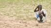 ಪ್ರಧಾನಿ ಹೇಳಿದಂತೆ ಕೋರ್ಸ್ ಮಾಡಿದ್ರೂ ಸಾಲ ತೀರಿಸಲು ಕಿಡ್ನಿ ಮಾರಾಟ!