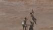ಪ್ರವಾಹದಲ್ಲಿ ಸಿಲುಕಿದ್ದವರನ್ನು ರಕ್ಷಿಸಿದ ವಾಯುಪಡೆ: ರೋಮಾಂಚನಕಾರಿ ವಿಡಿಯೋ