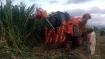 ಚಾಮರಾಜನಗರಕ್ಕೆ ಬಂತು ಕಬ್ಬು ಕಟಾವು ಯಂತ್ರ: ರೈತರಿಗೆ ತಂತು ಖುಷಿ