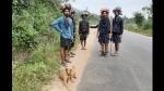 ಮಾಲಾಧಾರಿಗಳೊಂದಿಗೆ ಶಬರಿಮಲೆಗೆ ಪಾದಯಾತ್ರೆ ಹೊರಟ ಶ್ವಾನ