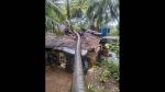 'ನಿಸರ್ಗ' ಪರಿಣಾಮ; ಕರ್ನಾಟಕದ ವಿವಿಧ ಜಿಲ್ಲೆಗಳಲ್ಲಿ ಮಳೆ