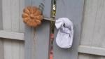 ಮಡಿಕೇರಿಯಲ್ಲಿ ಜಂಟಿ ಕಾರ್ಯಾಚರಣೆ: ಪ್ರವಾಸಿಗರಿದ್ದ ಹೋಂ ಸ್ಟೇ ಗೆ ಬೀಗ