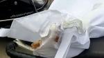 ಆಸ್ಪತ್ರೆಯಲ್ಲಿ ಮೃತ ಕೊವಿಡ್ ರೋಗಿಯ ದೇಹ ಕಚ್ಚಿ ತಿಂದ ಇಲಿಗಳು