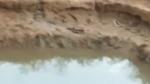 ಮೈಸೂರು: ಕೃಷಿ ಹೊಂಡಕ್ಕೆ ಬಿದ್ದು ಮೂವರು ಮಕ್ಕಳ ದಾರುಣ ಸಾವು