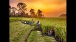 ಬಜೆಟ್ 2021: ರೈತರ ಆದಾಯವನ್ನು ದ್ವಿಗುಣಗೊಳಿಸುವ ಗುರಿ