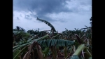 ರಾಮನಗರ ಜಿಲ್ಲೆಯಲ್ಲಿ ಅವಾಂತರ ಸೃಷ್ಟಿಸಿದ ಬಿರುಗಾಳಿ ಸಹಿತ ಭಾರೀ ಮಳೆ