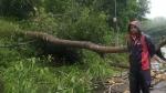 ದ.ಕ ಜಿಲ್ಲೆಯಲ್ಲಿ ಮುಂಗಾರು ಅಬ್ಬರ-ಭಾರೀ ಗಾಳಿ ಮಳೆಗೆ ಅಪಾರ ಹಾನಿ