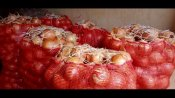 ಟರ್ಕಿ ಟು ಮಂಗಳೂರು; ಬೆಲೆ ಕಡಿವಾಣಕ್ಕೆ ಬಂದ ಈರುಳ್ಳಿ ಬೆಲೆಯೂ ಹೀಗಾಯ್ತು ನೋಡಿ!