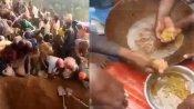 'ಚಿನ್ನ ಸಿಕ್ತು ಚಿನ್ನ': ಗುದ್ದಲಿ ಹಿಡಿದು ಬೆಟ್ಟದತ್ತ ಓಡಿದ ಗ್ರಾಮಸ್ಥರು!