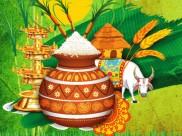 ಮಕರ ಸಂಕ್ರಾಂತಿ ಹಬ್ಬದ ಹಿಂದಿರುವ ಶ್ರೀಮಂತ ಜನಪದ ಸಂಸ್ಕೃತಿ