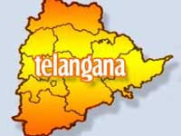 After suicides over Telangana, shutdown hits life in region