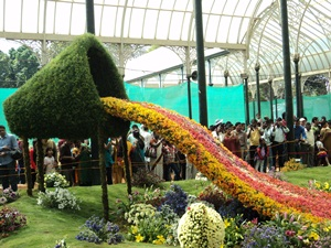 Lalbagh Flower Show 2012