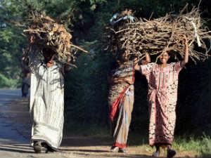 Happy Womans Day Meet Savitri Drakshayini Ramani Aid