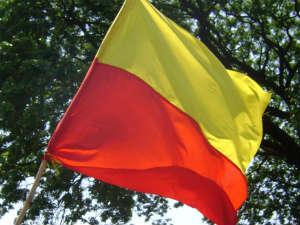 Kannada Flag Big