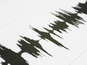 Earth Crack Found In Badagubettu Gram Pancahyat
