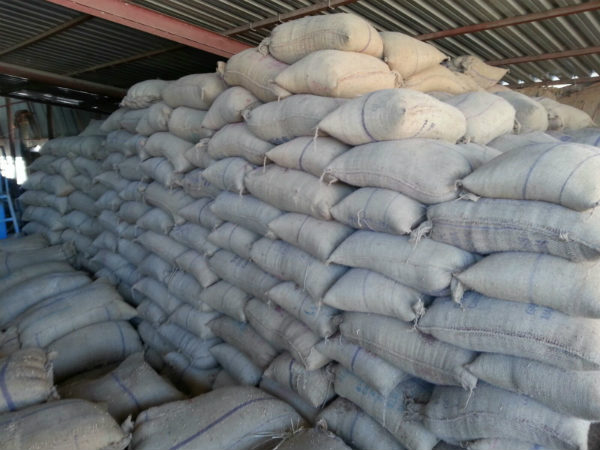 Finger millet racket, police seized warehousing in KR Pete, Mandya