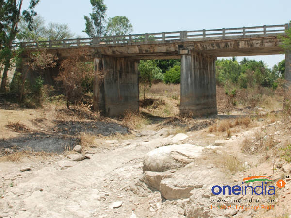 Rivers and Lakes dried up in Mandya district