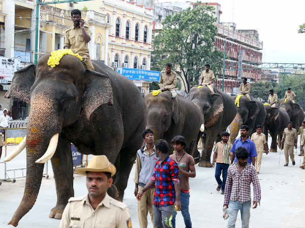 Karnataka elephants will get unique ID number