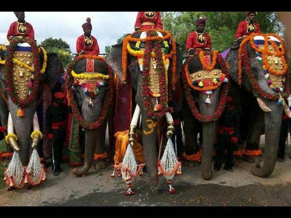 ಶುಕ್ರವಾರ ಸಂಜೆ ಮಕರ ಲಗ್ನದಲ್ಲಿ ಅರಮನೆಗೆ ಗಜಪಡೆ ಪ್ರವೇಶ