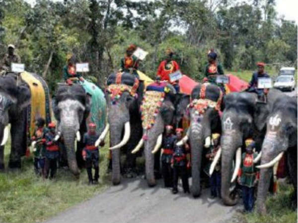 Dasara special: Elephant troop ring master Mahout