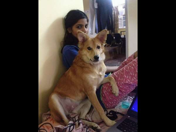 Didn't Like Her Dog, So Bengaluru Woman Refused To Marry