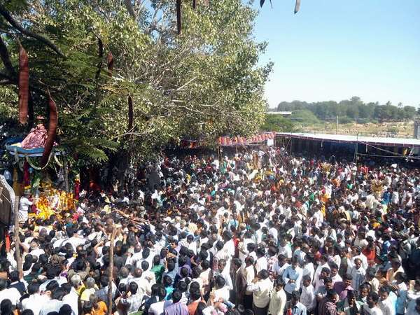 Pavagada Nagalamdaike Temple Visit To Erradaicate Naga Dosham