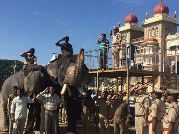 Mysuru decked up for World Famous Jamboo Savari