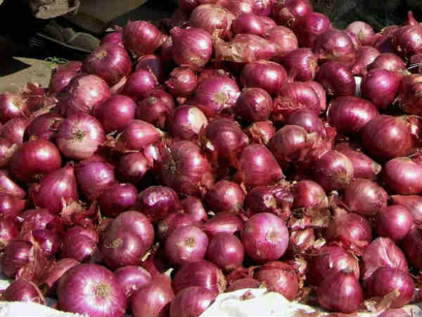 Karnataka Government has released Rs.50cr to purchase onion