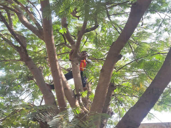 A farmer from Maddur attempted to commit suicide