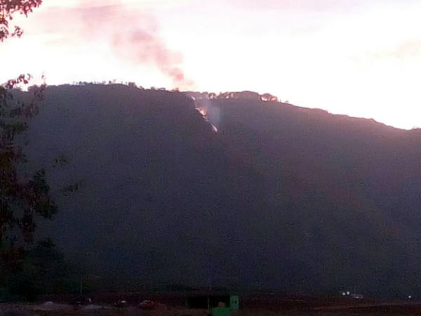 Verdant Himavad Gopala Swamy hill devastated by fire