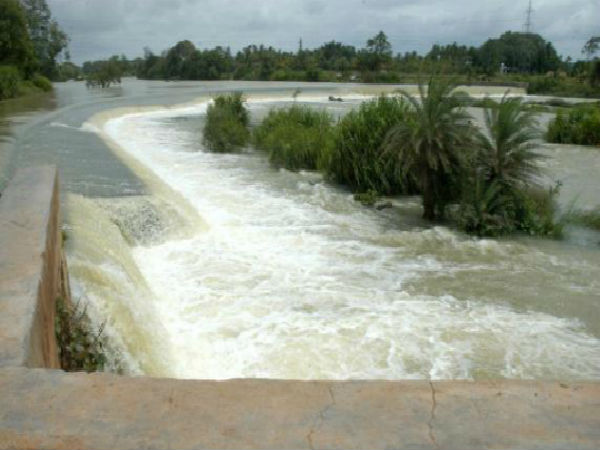 Cauvery: Karnataka should release 2,000 cusecs of water to TN till Jan 4