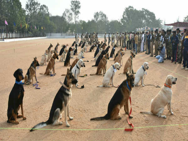 Police dogs show at the 60th all-India police duty meet held at Mysuru KSRP ground