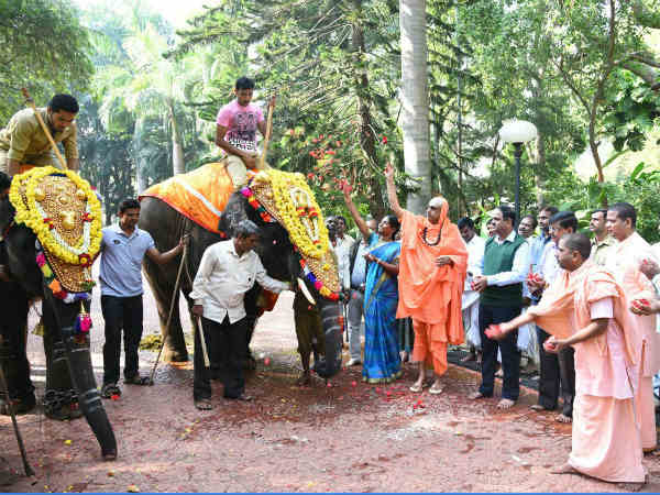 suttur mutt given elephant to government