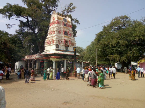 Historical Chikkalur Jatre begins in Chamarajanagar district