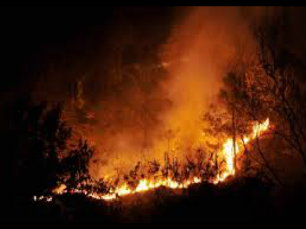58 houses gutted in fire in Himachal Pradesh