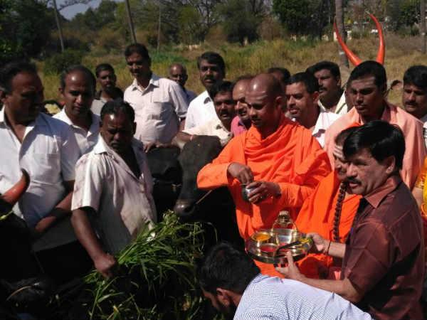 ಮೈಸೂರು: 74 ಗೋವುಗಳಿಗೆ ಪೂಜೆ ಮಾಡಿ ಬಿಎಸ್ವೈ ಹುಟ್ಟು ಹಬ್ಬ ಆಚರಣೆ