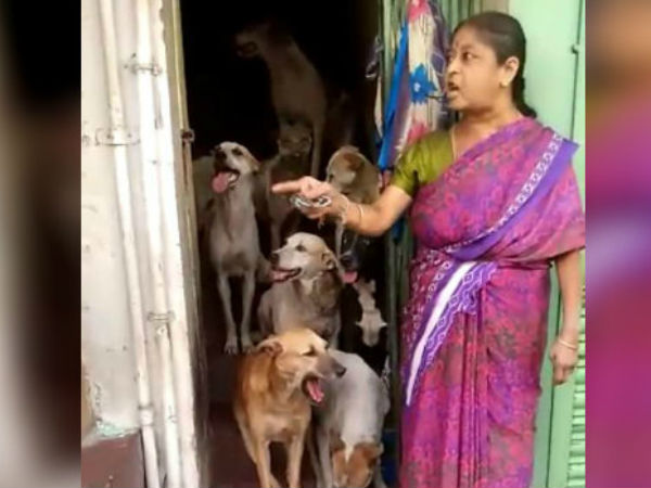 women raising stray dogs: filed complaint Corporation staff took the dogs