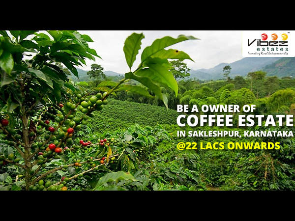 Ready For Buy Coffee Estate In Western Ghats Sakaleshpur By Online