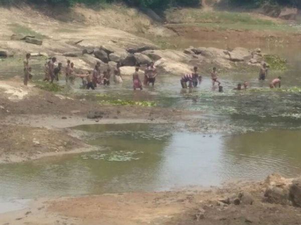 A group of miscreants put poison to lake to catch fishes at Moodbidre