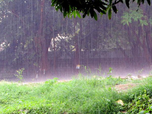 ಮಲೆನಾಡಿನ ಮಳೆಗಾಲ: ಸೊಬಗಷ್ಟೇ ಅಲ್ಲ, ಸಾಹಸವೂ ಹೌದು!