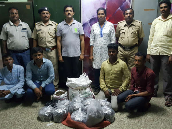 Mysuru Police Have Arrested 4 Men In Relation With Ganja Smuggling Case