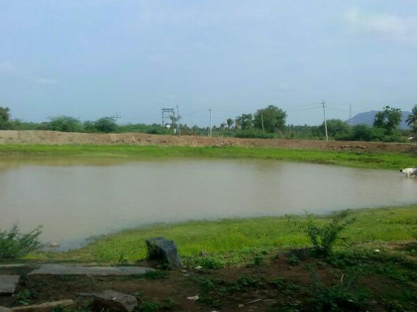 Here is why rain in Kamagere of Chamarajanagar district hasn't filled lakes yet
