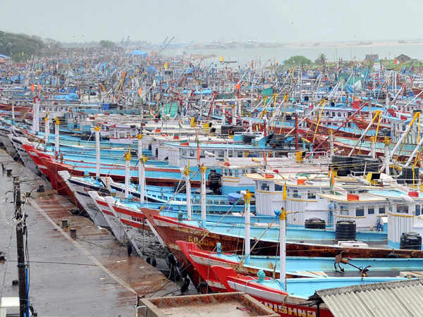 Fish prices spike to all-time high in Dakshina Kannada due to closure of Harbor