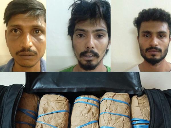 Mangaluru Ccb Police Arrest 3 Ganja Peddlers 10 Kg Ganja Seized