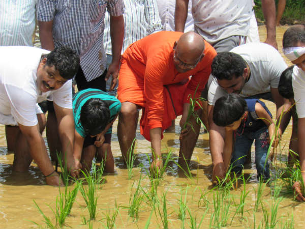 agriculture in kannada Impact of gst on agricultural sector would be benefical in the long run gst would help the farmers to get a better price for their product.